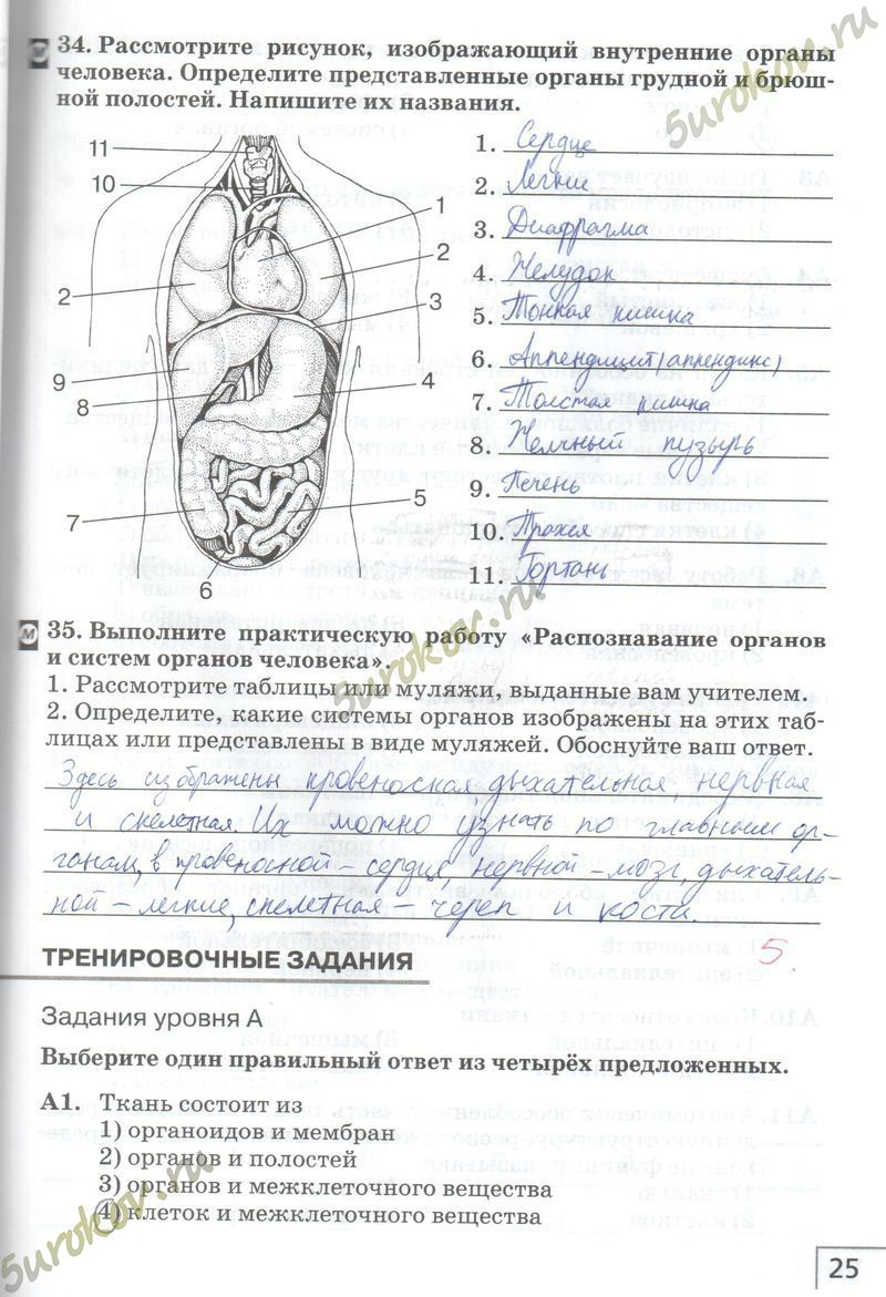 гдз по биологии агафонова 8 класс